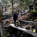 Mt Marcy: Yellow Foot Trail to Marcy 4